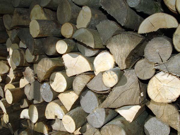 Costo-legname-per-stufa-verona